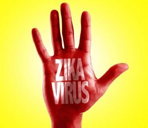 Virus by mosquito