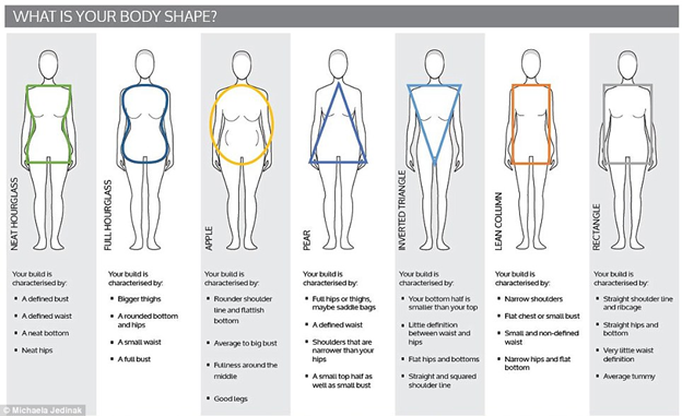 Types Of Body Shaped Explained