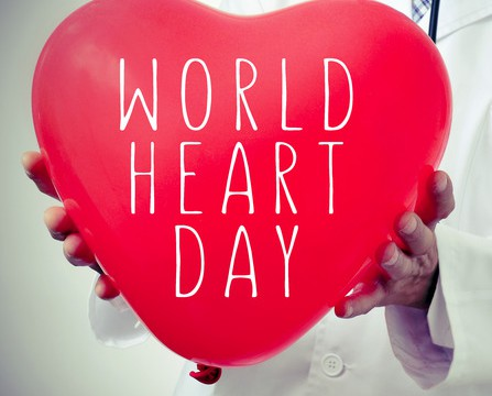 closeup of a doctor man showing a red heart-shaped balloon with the text world heart day written in it